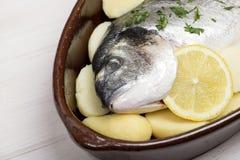 一条在一个砂锅里面的生鱼用柠檬和绿色的特写镜头在一张白色木桌上准备被烹调 免版税库存图片