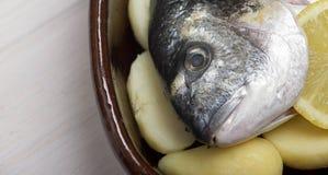 一条在砂锅里面的生鱼用柠檬和绿色的特写镜头准备被烹调 库存图片