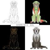 一条多角形坐的狗的风格化几何模型在fac的 库存照片