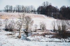 一条多雪的冬天河的风景 免版税图库摄影