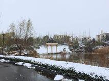 一条多雪的道路 免版税库存图片