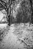 一条多雪的道路 免版税图库摄影