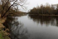 一条大河在春天或秋天在一多云天 免版税库存照片