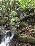 一条安静的小河流经山 美丽和平安 库存图片