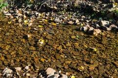 一条安静的小河的岩石河床 免版税图库摄影
