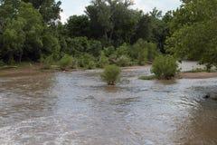 一条宽和泥泞的河的移动的水 免版税库存照片