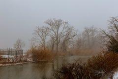 一条小多雪的河的冬天风景在飞雪以后的 免版税库存图片