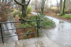 一条小小河在公园和雨中 免版税库存照片