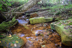 一条小小河弄脏了从酸矿坑排水的桔子 免版税库存照片