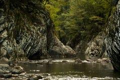 一条小小河的一个美丽如画的岩石峡谷在一个热带森林里 库存图片
