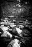 一条小小河的黑白急流 免版税库存图片