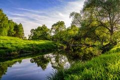 一条小森林河和它的银行在一个春天晚上 免版税库存照片