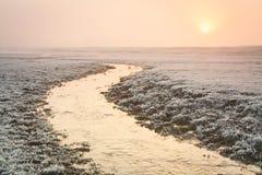 一条小河在一个有雾的冬天早晨,牛津。 图库摄影