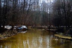 一条小河在公园春天下午 图库摄影