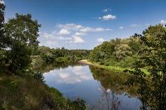 一条小河在夏天 免版税库存图片