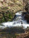 一条小河在戈兰地区 免版税库存图片