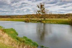 一条小河的岸在秋天天 秋天横向 免版税库存照片