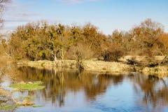 一条小河的岸在秋天天 秋天横向 库存图片