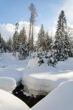一条小河的残余在冬天 免版税库存图片