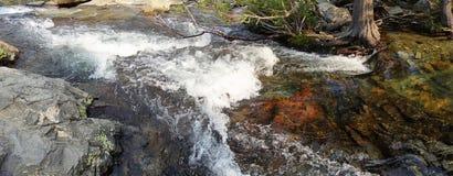 一条小河的水在把变成急流的高山脉,它在被淹没的岩石四处走动 库存照片