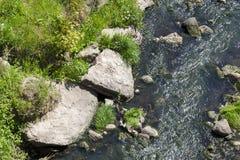 一条小河的水 库存照片