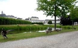 一条小河的看法有鸟和城堡的翼的在德国Bruhl 库存图片