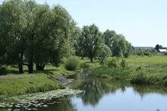一条小河的绿色岸 免版税库存照片