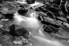 一条小河的黑白缓慢的快门速度摄影有青苔的在森林包括岩石 免版税库存照片