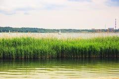一条小白色风船在一个大湖漂浮反对白色 免版税库存图片