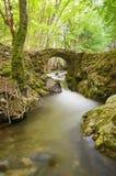 一条小的河和老桥梁。 免版税库存照片