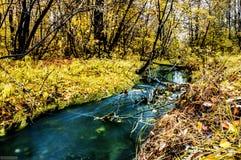 一条小美丽的河 库存图片