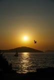 一条小船和一只鸟在日落 库存图片