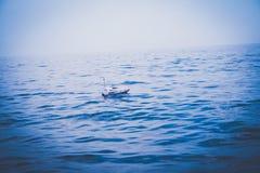 一条小船在蓝色海 库存图片