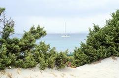 一条小船的瞥见在绿色树、蓝色海和多云天空之间的 免版税图库摄影