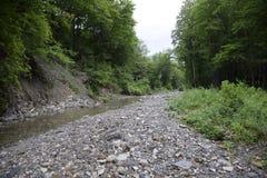 一条山小河在Nibirjaya 及早划分为的喀尔巴阡山脉有横向山10月雪乌克兰 库存图片