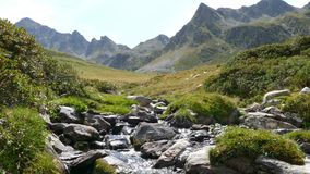 一条山小河的风景,在安道尔的比利牛斯 股票视频