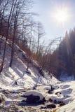 一条山河在峡谷 免版税库存图片