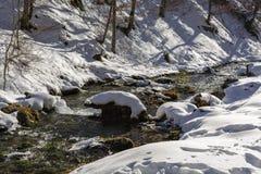 一条山河在峡谷 免版税库存照片