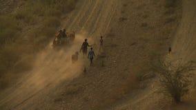 一条干旱的路的回家 股票视频