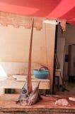 一条新近地被捉住的箭鱼的头在桌上的 库存图片