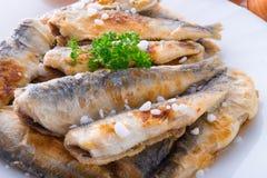 发怒地被镶嵌的油煎的鲱鱼 图库摄影