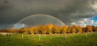 一条明亮的双重彩虹的全景在秋天 与一片金黄叶子的树 库存照片