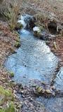 一条有一点冰冷的小河在冬天 免版税库存图片