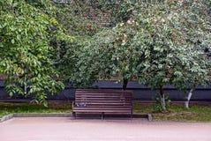 一条木棕色长凳在公园 库存图片