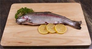 一条未加工的鳟鱼 库存照片