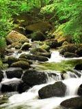 一条未触动过的小河通过Keniveil 图库摄影