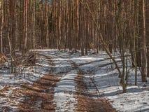 一条森林公路的叉子在冬天 图库摄影