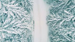 一条森林公路的空中下来上面视图在大雪的 库存图片