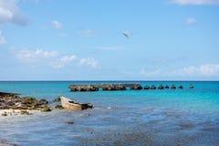 一条残破的木小船说谎在蓝色海洋的岸的一块礁石的和残破的定住在海洋 免版税库存图片