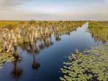 一条水路在农村布里瓦德县,佛罗里达 库存照片